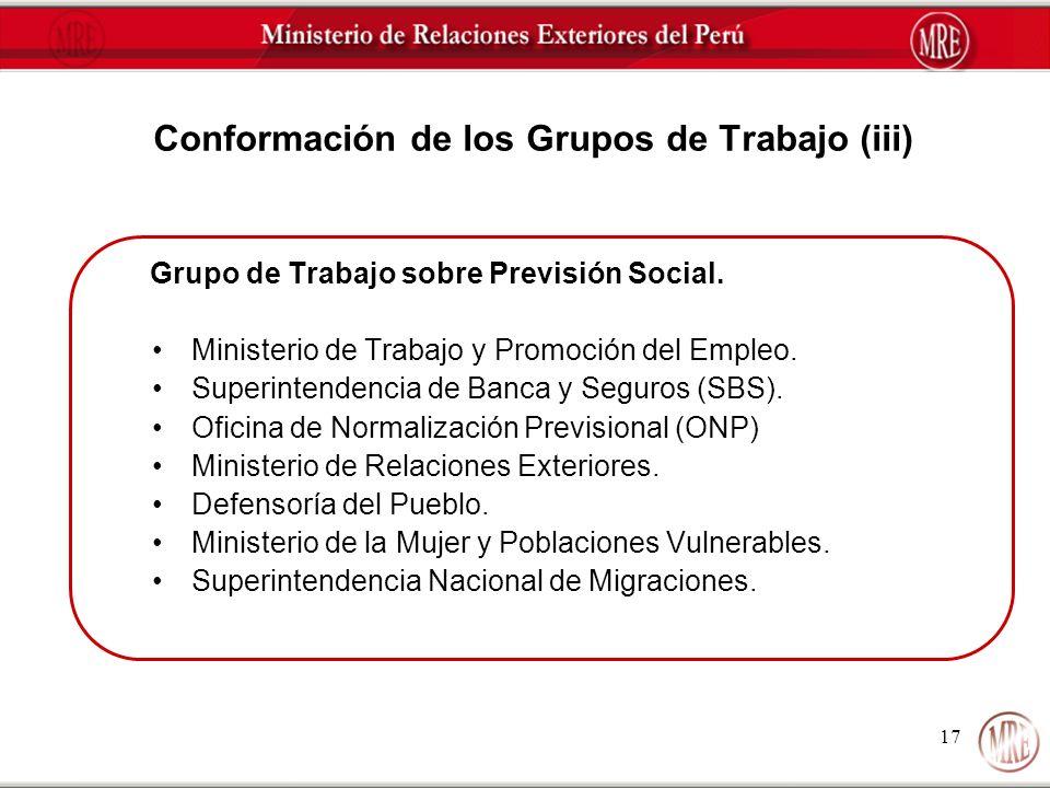 Conformación de los Grupos de Trabajo (iii)