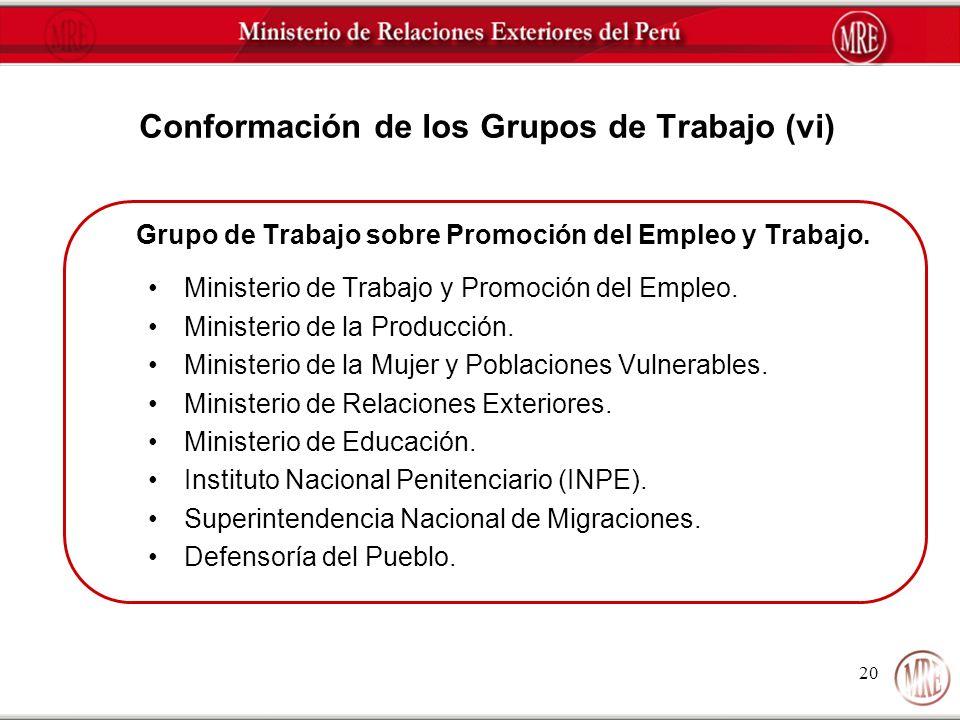 Conformación de los Grupos de Trabajo (vi)