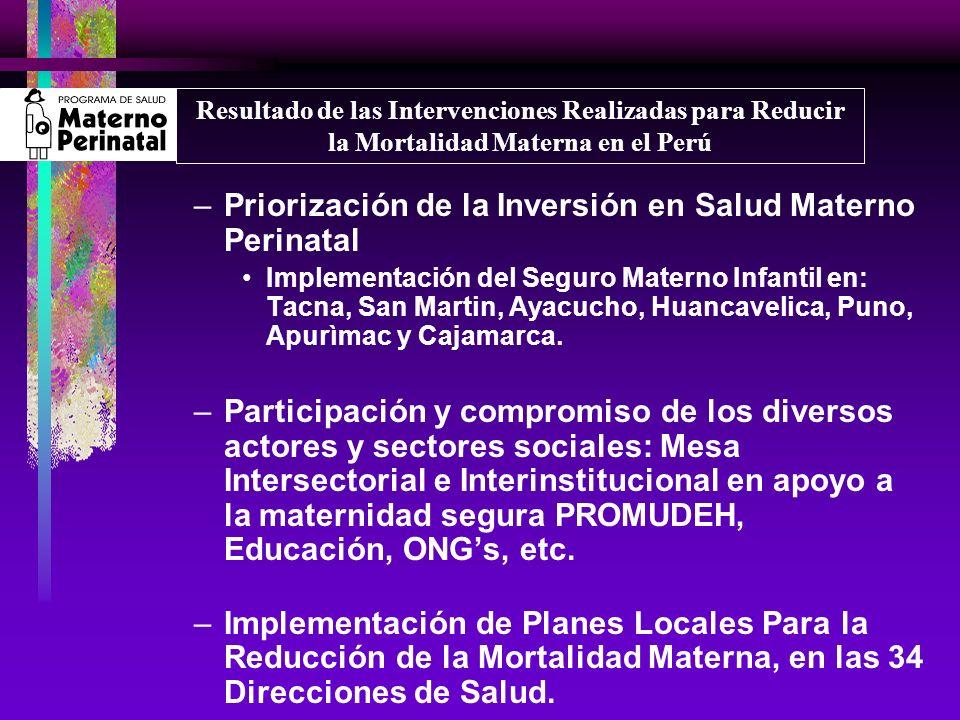 Priorización de la Inversión en Salud Materno Perinatal