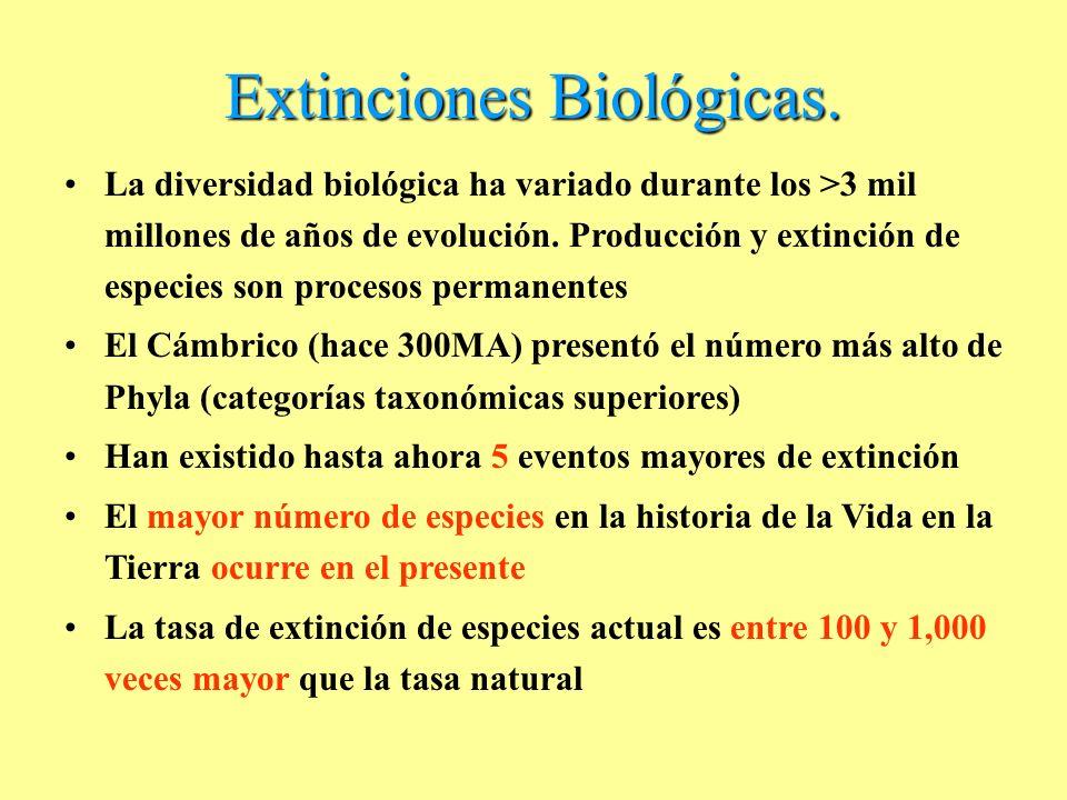 Extinciones Biológicas.