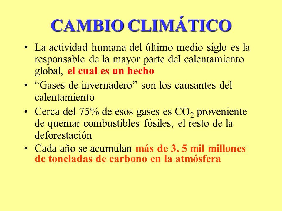 CAMBIO CLIMÁTICO La actividad humana del último medio siglo es la responsable de la mayor parte del calentamiento global, el cual es un hecho.