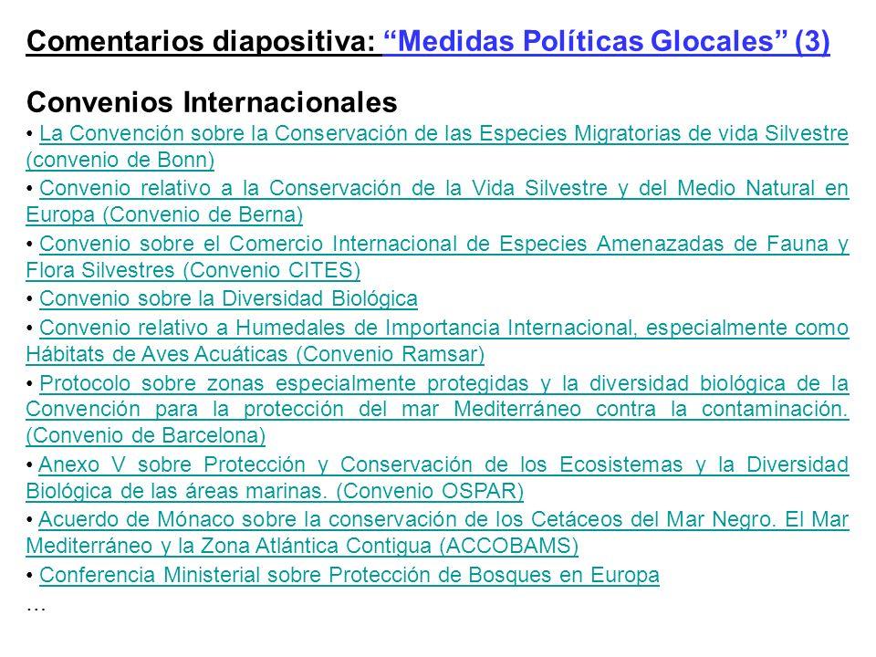 Comentarios diapositiva: Medidas Políticas Glocales (3)