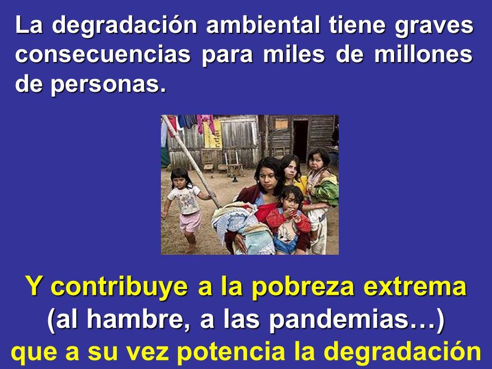 Y contribuye a la pobreza extrema (al hambre, a las pandemias…)