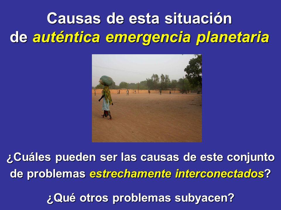 Causas de esta situación de auténtica emergencia planetaria