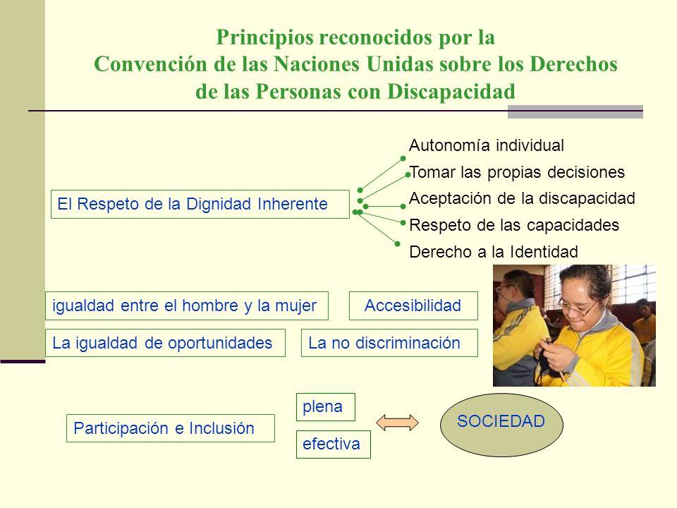 Principios reconocidos por la Convención de las Naciones Unidas sobre los Derechos de las Personas con Discapacidad