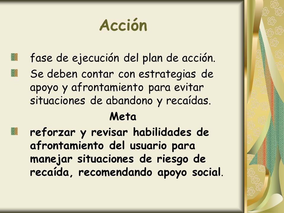 Acción fase de ejecución del plan de acción.