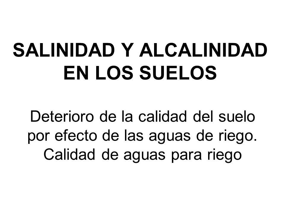 SALINIDAD Y ALCALINIDAD EN LOS SUELOS