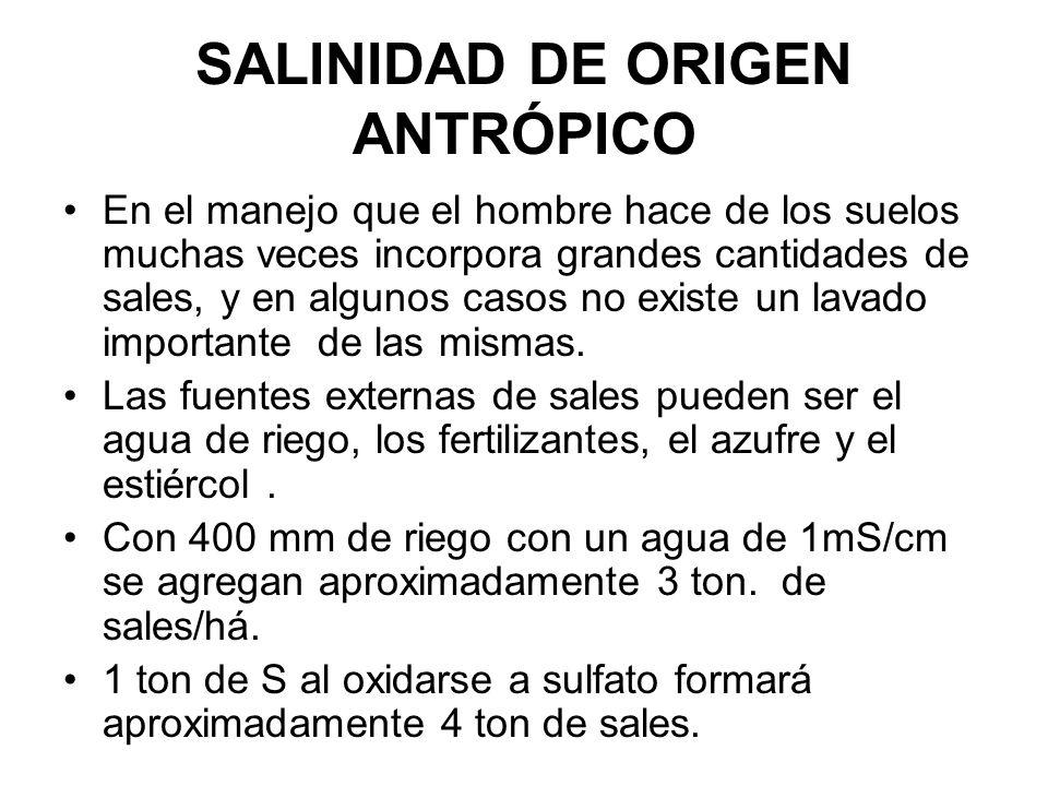 SALINIDAD DE ORIGEN ANTRÓPICO