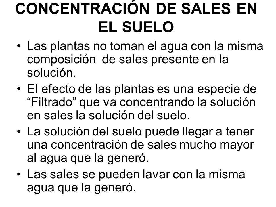 CONCENTRACIÓN DE SALES EN EL SUELO