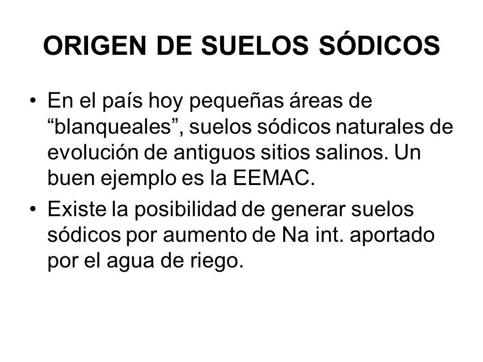 ORIGEN DE SUELOS SÓDICOS