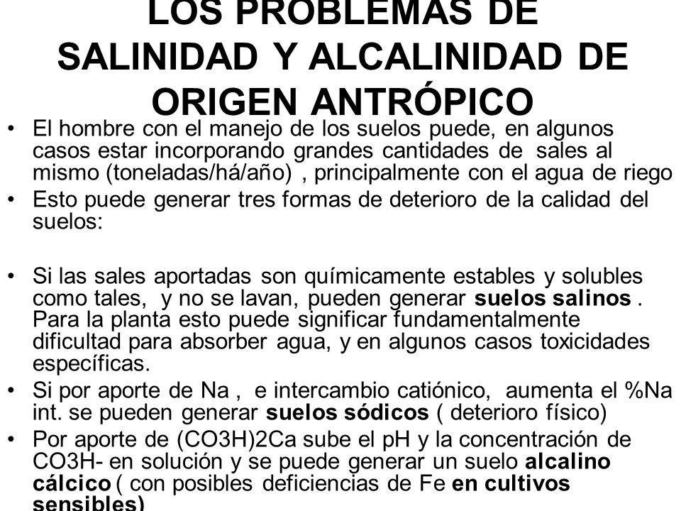 LOS PROBLEMAS DE SALINIDAD Y ALCALINIDAD DE ORIGEN ANTRÓPICO