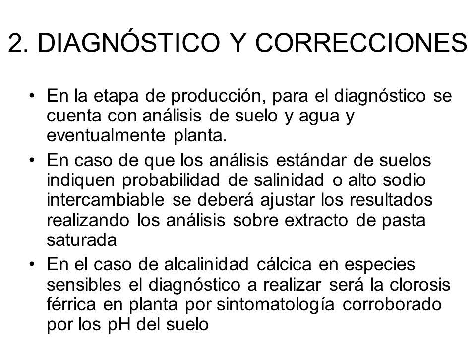 2. DIAGNÓSTICO Y CORRECCIONES