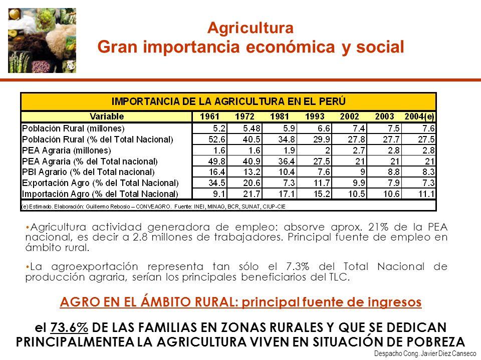 Agricultura Gran importancia económica y social
