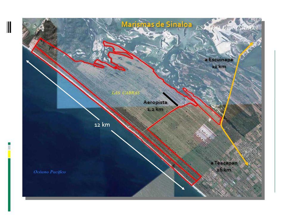 Marismas de Sinaloa 12 km a Escuinapa 12 km Aeropista 1.2 km