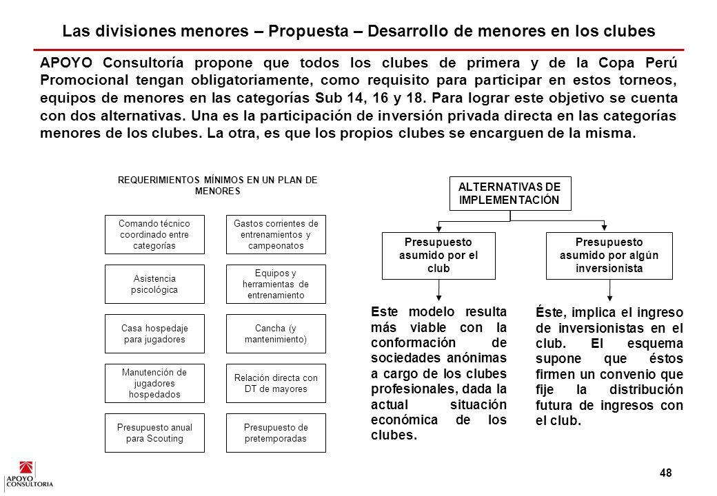 Las divisiones menores – Propuesta – Desarrollo de menores en los clubes