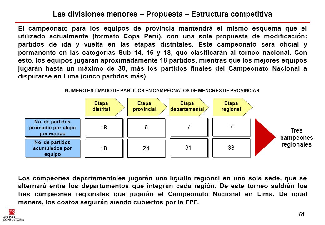 Las divisiones menores – Propuesta – Estructura competitiva