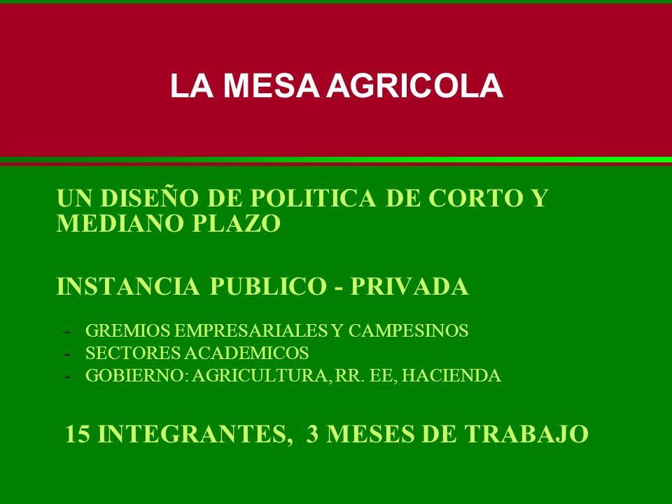 LA MESA AGRICOLA 15 INTEGRANTES, 3 MESES DE TRABAJO