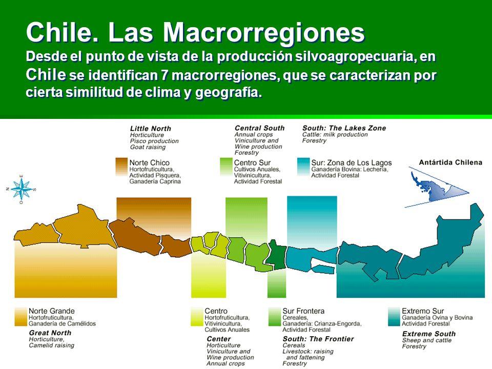 Chile. Las Macrorregiones