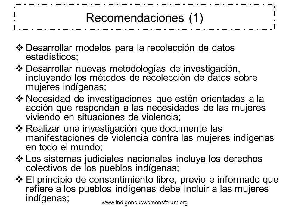 Recomendaciones (1) Desarrollar modelos para la recolección de datos estadísticos;