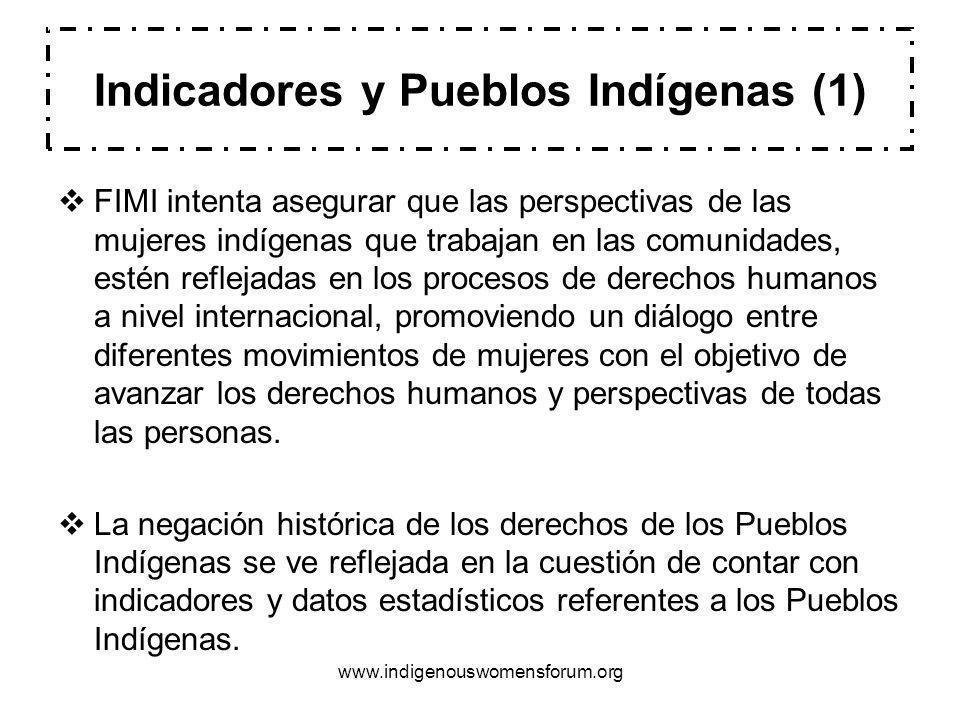 Indicadores y Pueblos Indígenas (1)