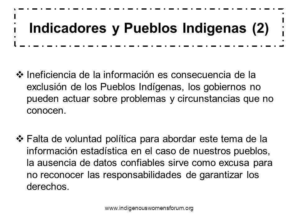 Indicadores y Pueblos Indigenas (2)