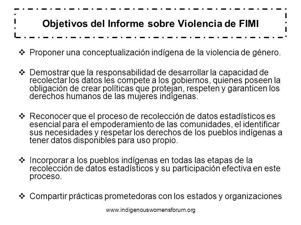 Objetivos del Informe sobre Violencia de FIMI