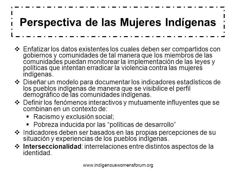 Perspectiva de las Mujeres Indígenas