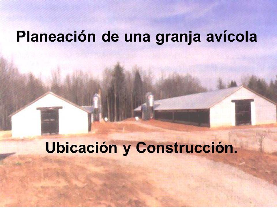 Planeación de una granja avícola