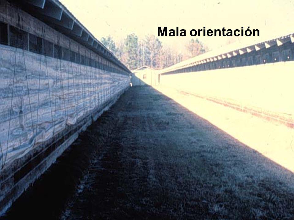 Mala orientación