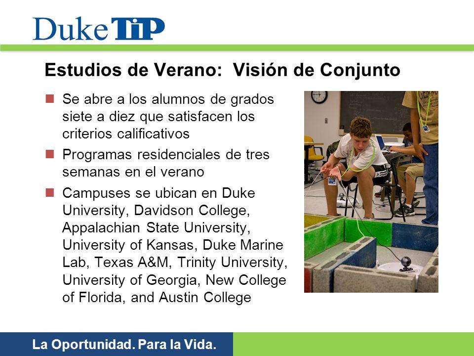 Estudios de Verano: Visión de Conjunto