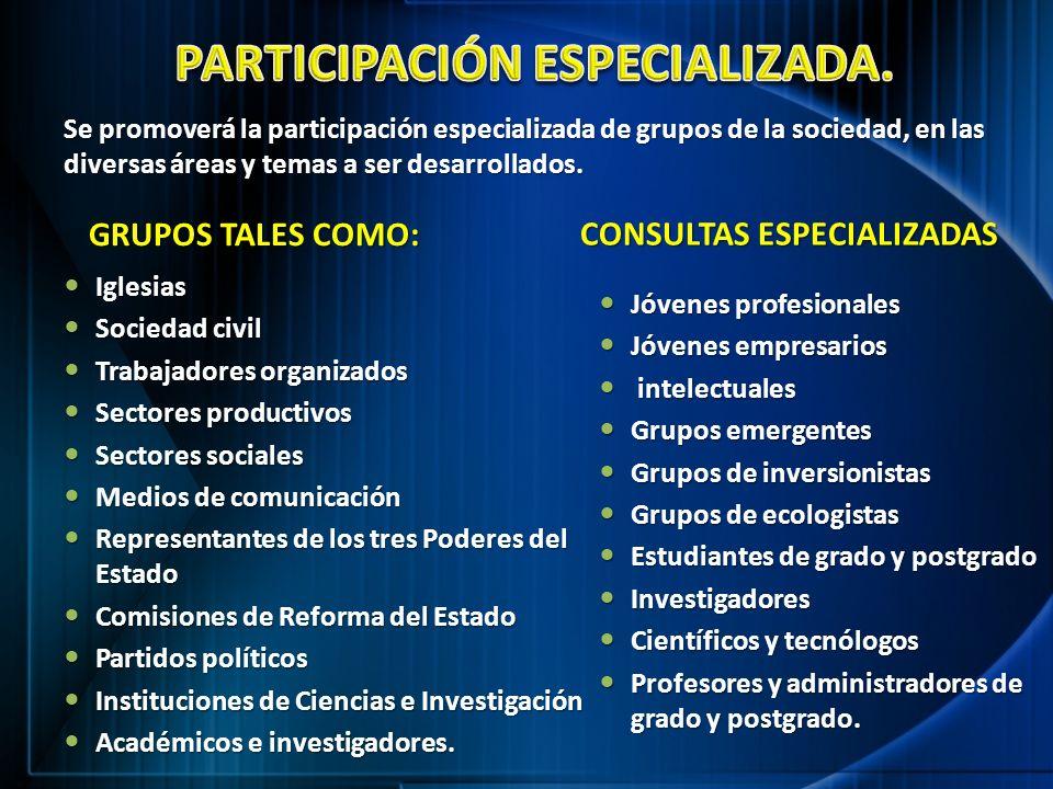 PARTICIPACIÓN ESPECIALIZADA.