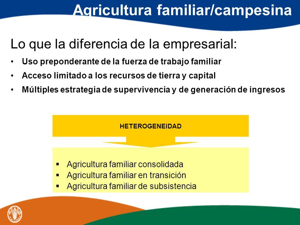 Agricultura familiar/campesina