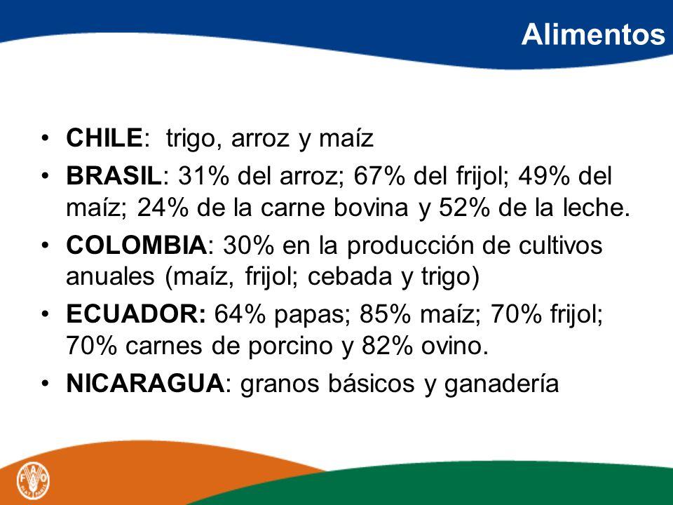 Alimentos CHILE: trigo, arroz y maíz