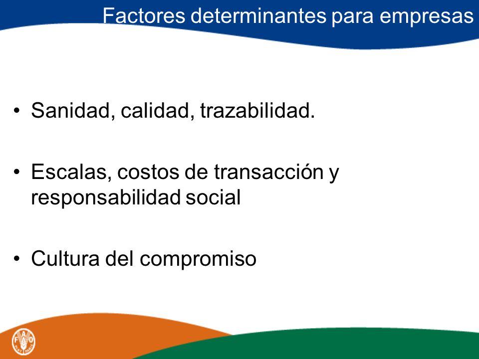 Factores determinantes para empresas