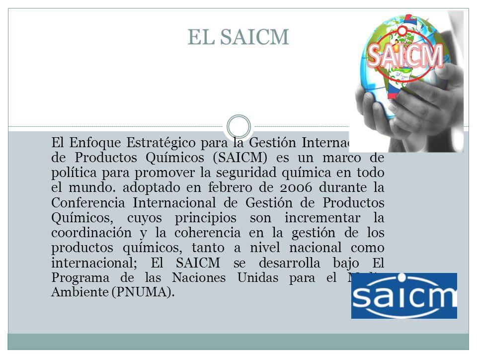 EL SAICM