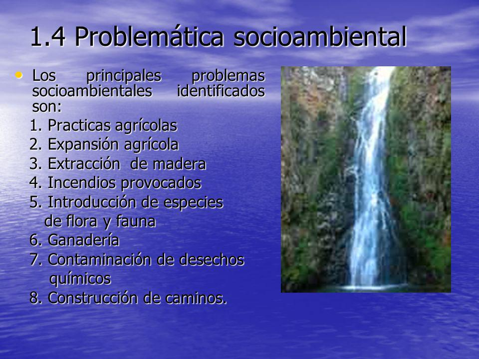 1.4 Problemática socioambiental