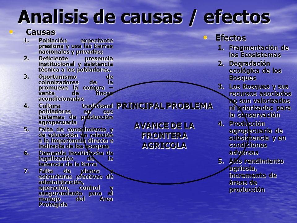 Analisis de causas / efectos