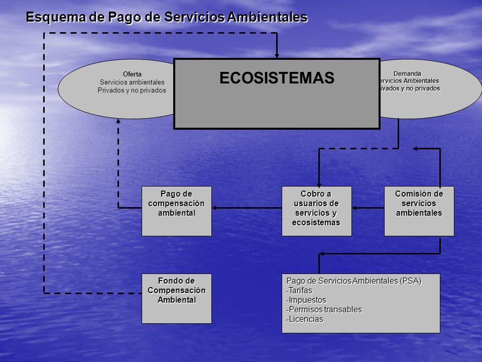 ECOSISTEMAS Esquema de Pago de Servicios Ambientales