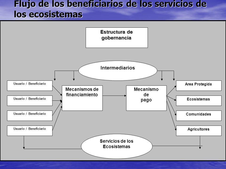 Flujo de los beneficiarios de los servicios de los ecosistemas