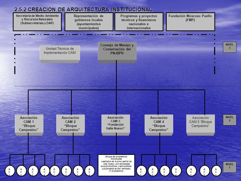 2.5.2 CREACION DE ARQUITECTURA INSTITUCIONAL