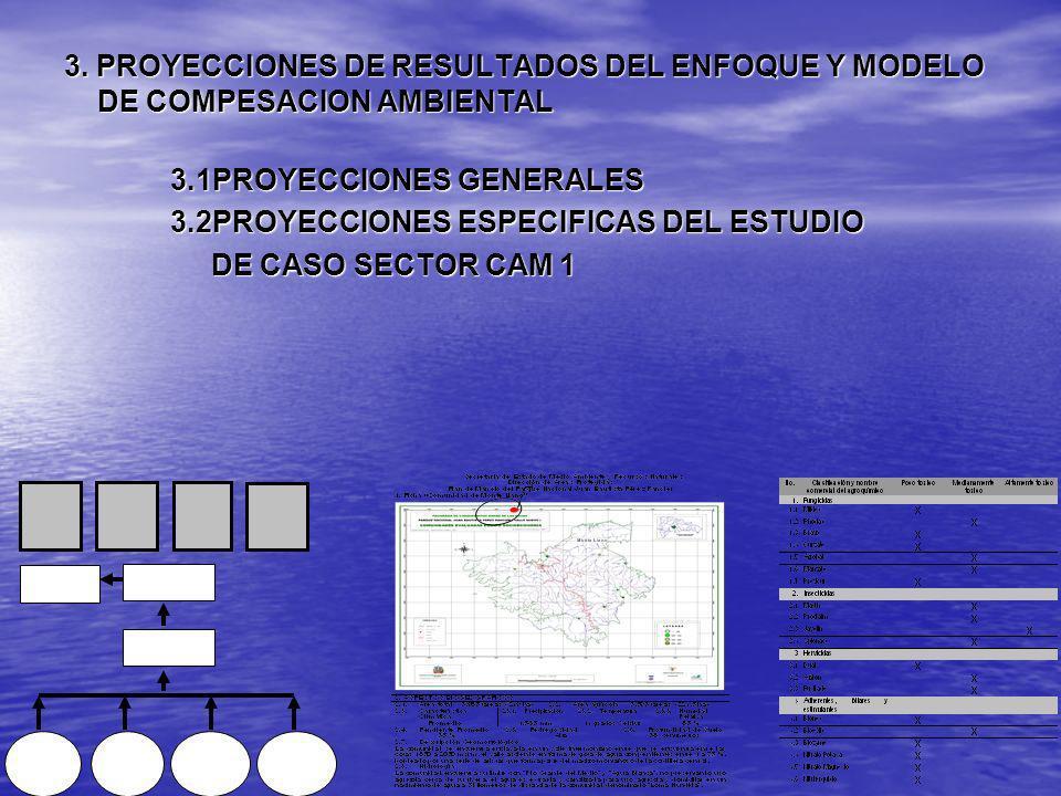3. PROYECCIONES DE RESULTADOS DEL ENFOQUE Y MODELO DE COMPESACION AMBIENTAL