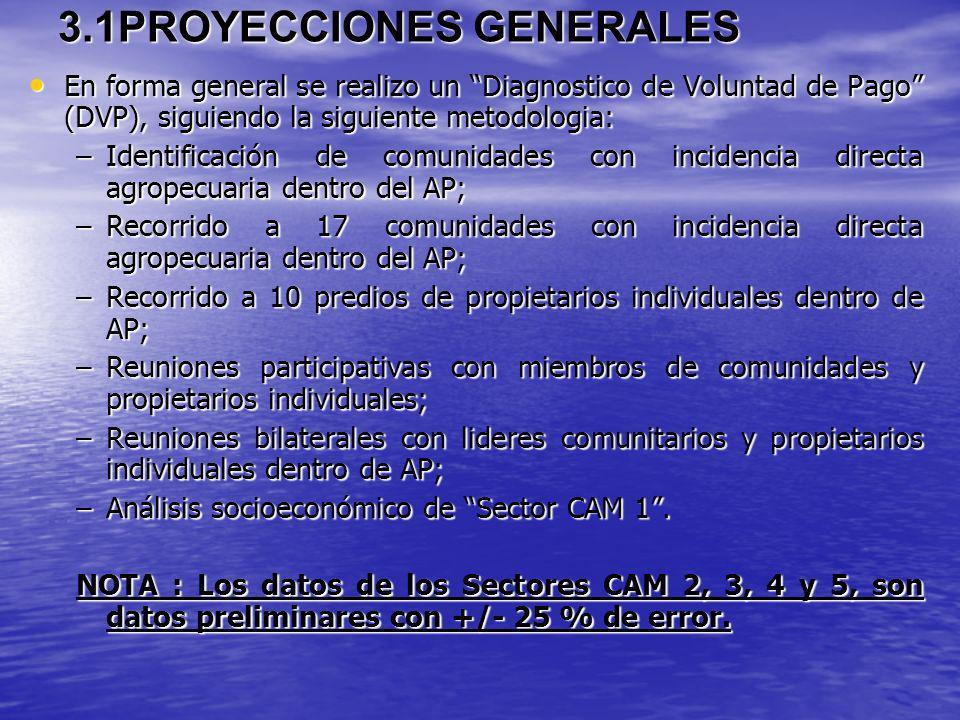 3.1PROYECCIONES GENERALES