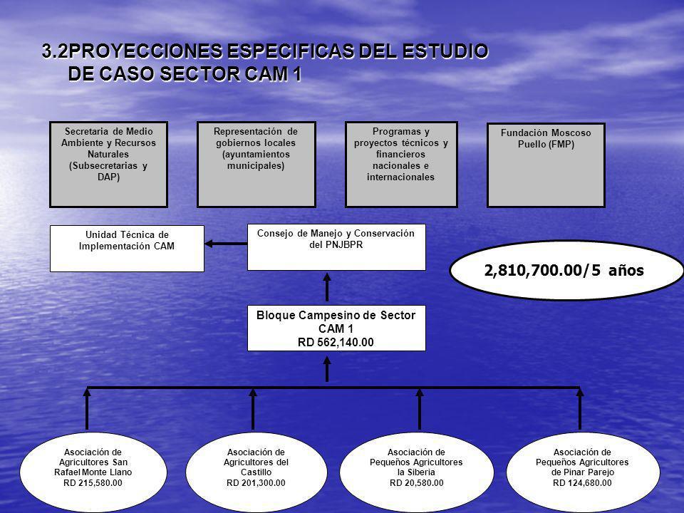 3.2PROYECCIONES ESPECIFICAS DEL ESTUDIO DE CASO SECTOR CAM 1