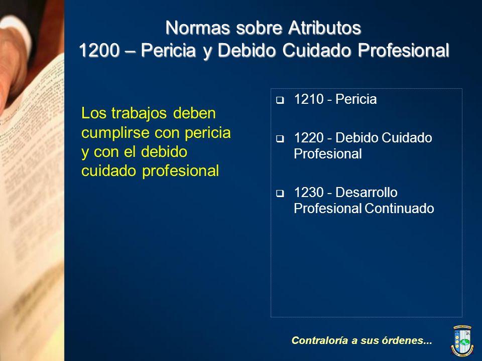 Normas sobre Atributos 1200 – Pericia y Debido Cuidado Profesional