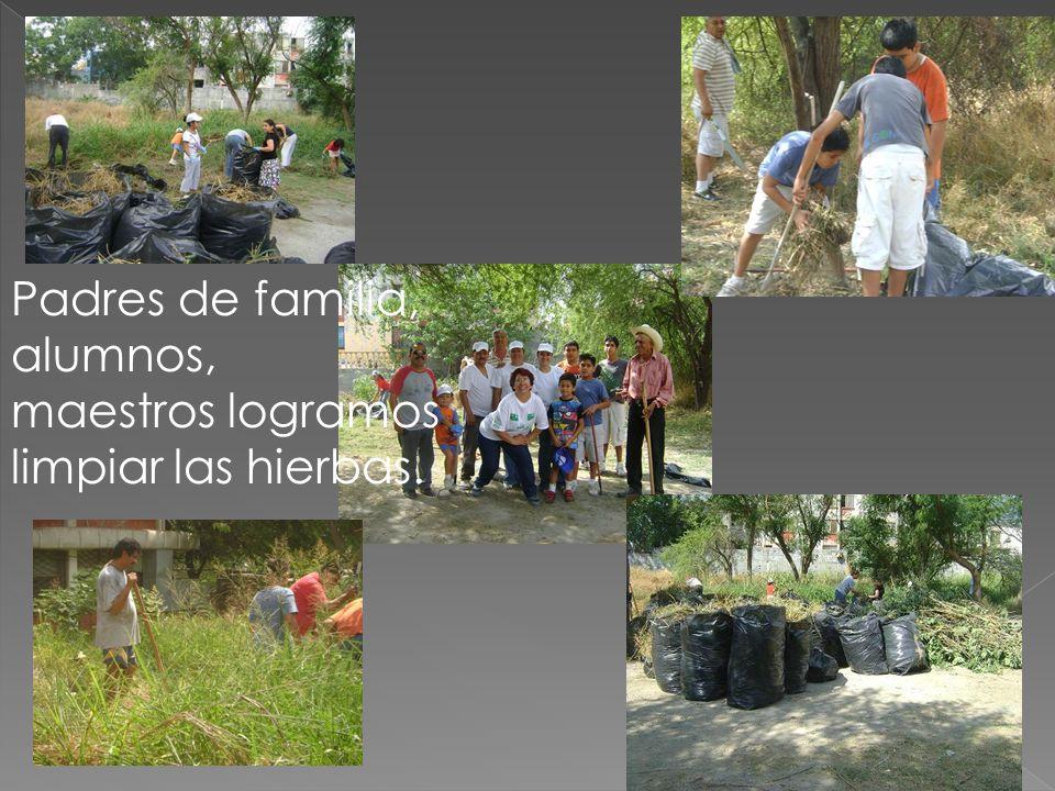 Padres de familia, alumnos, maestros logramos limpiar las hierbas.