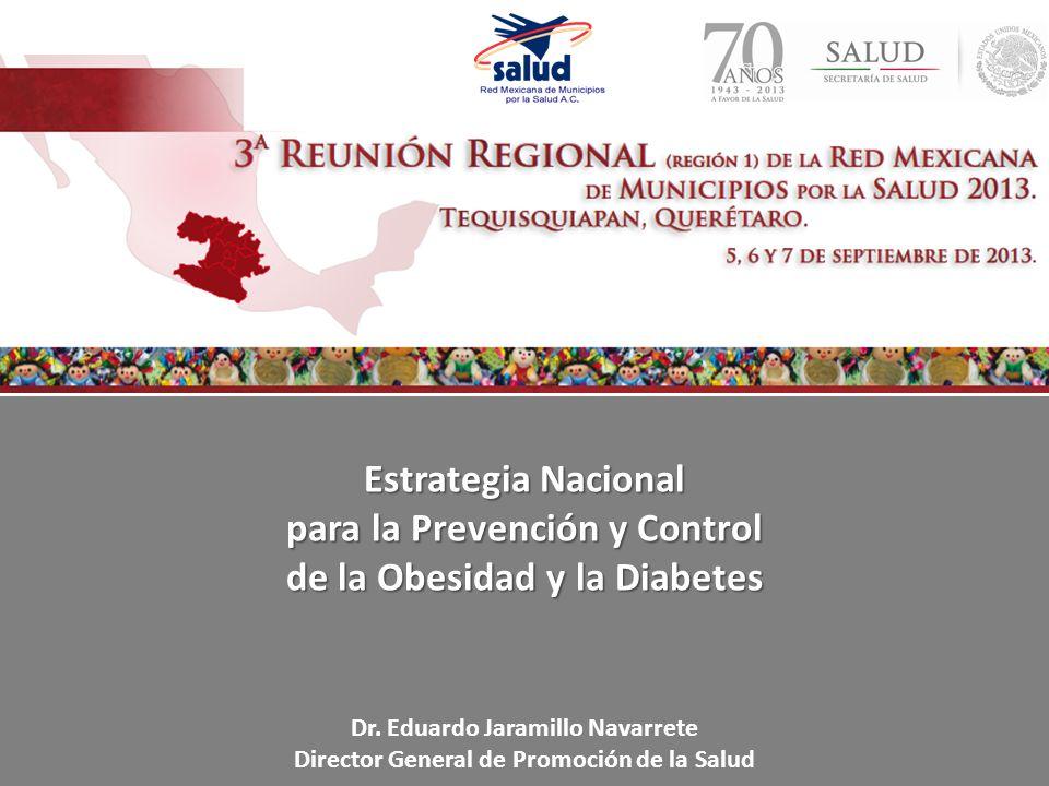Estrategia Nacional para la Prevención y Control de la Obesidad y la Diabetes