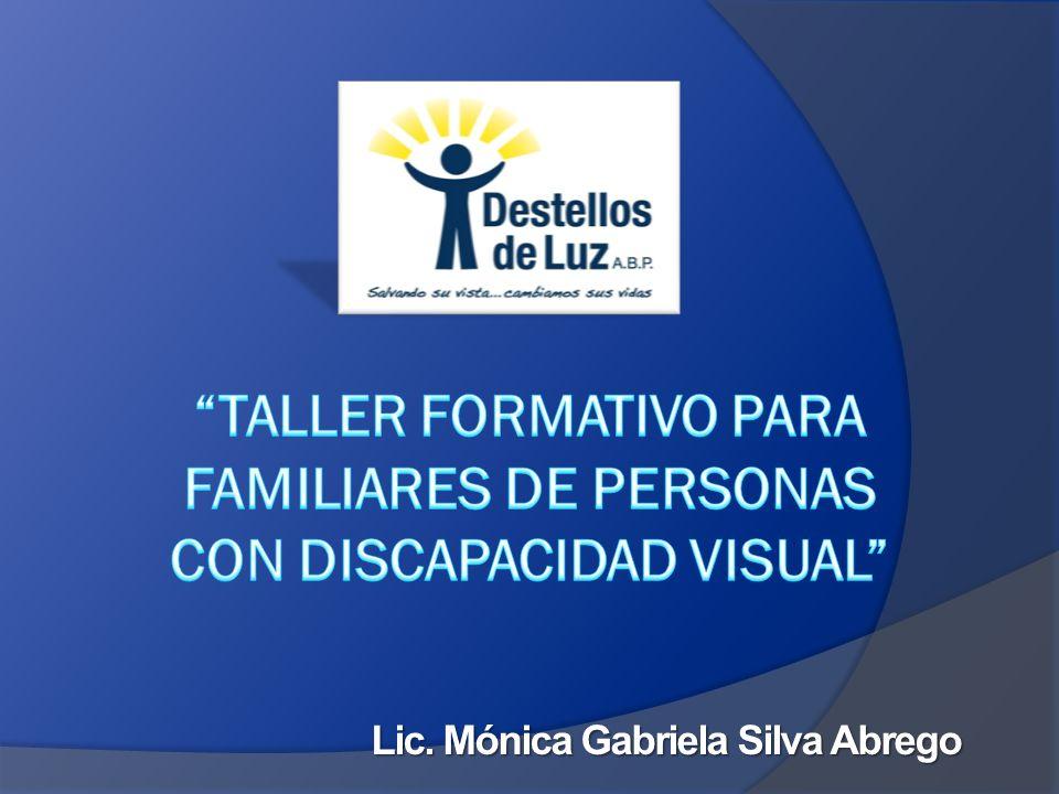 TALLER FORMATIVO PARA FAMILIARES DE PERSONAS CON DISCAPACIDAD VISUAL