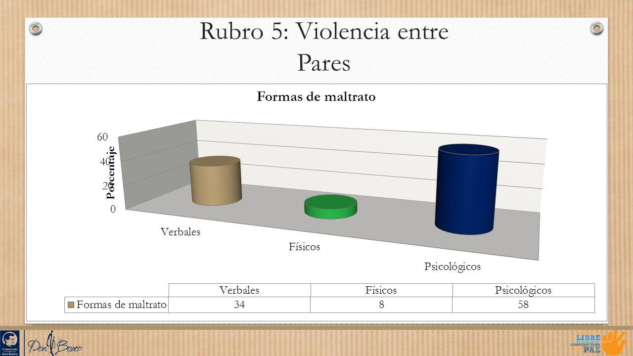 Rubro 5: Violencia entre Pares