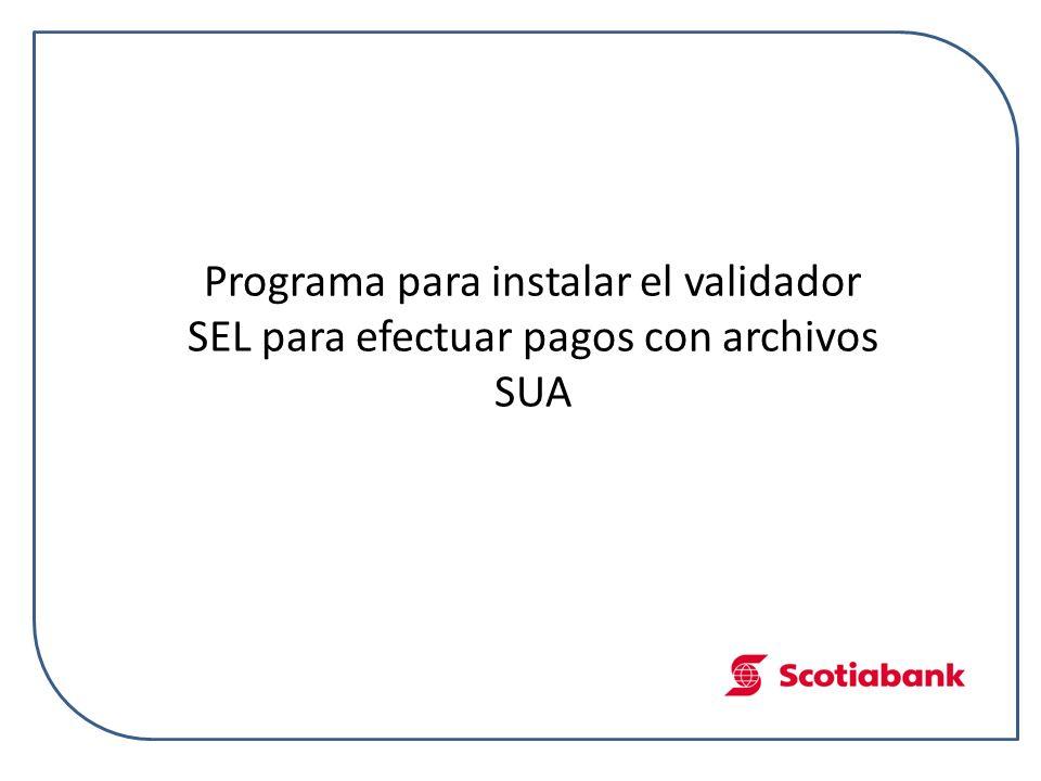 Programa para instalar el validador SEL para efectuar pagos con archivos SUA