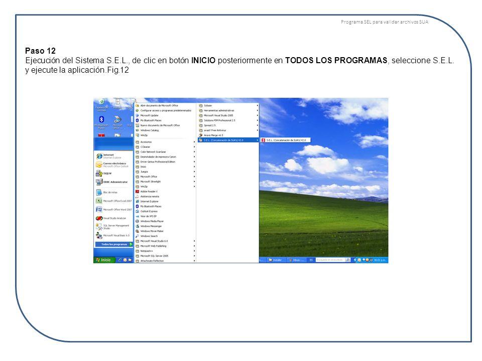 Programa SEL para validar archivos SUA